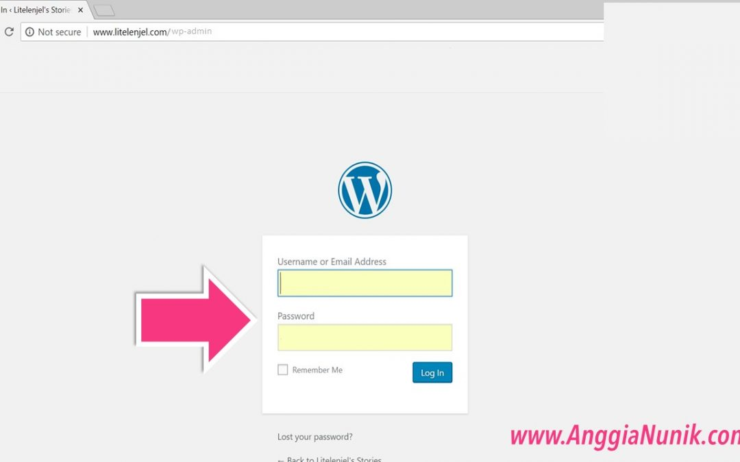 Cara Membuat Postingan di Website CMS WordPress